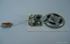 Sound Module with press button