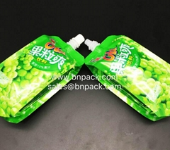 Customized Nozzle Packs Pouch