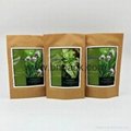 standing up kraft paper bags for