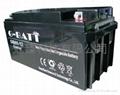 12V65AH免維護鉛酸蓄電池 4