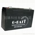 6V7AH鉛酸蓄電池  童車專用 5