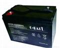 6V200AH 鉛酸蓄電池 2