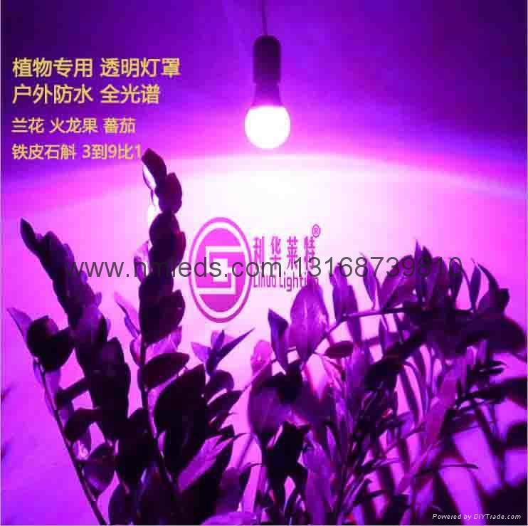 戶外LED植物生長燈 3