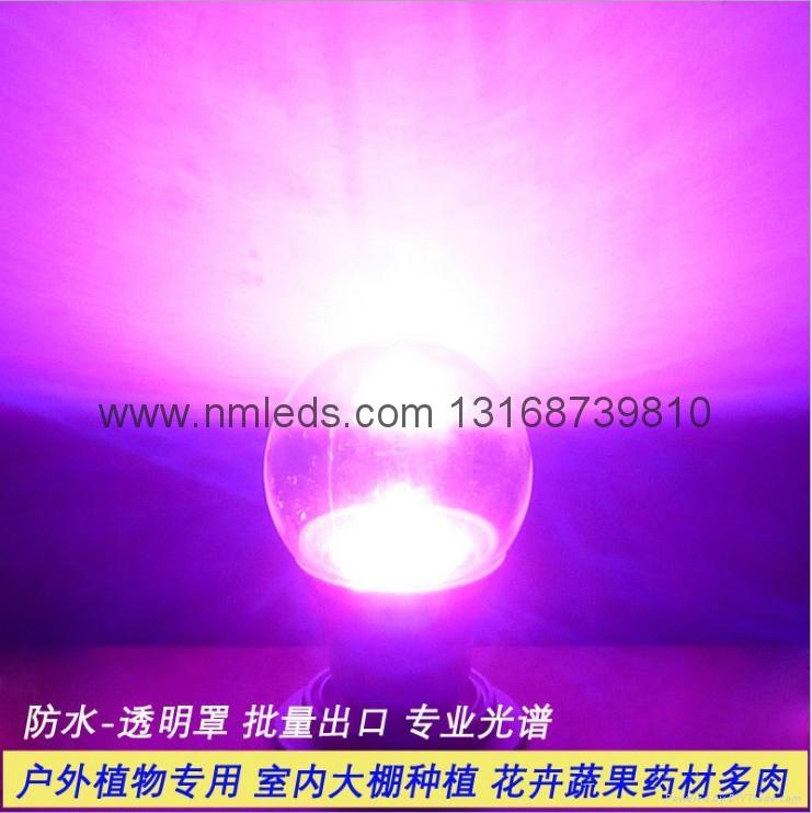 戶外LED植物生長燈 4