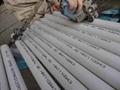 Seamless Stainless Steel tube/ Tubo de