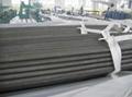 Seamless Boiler Tubes/Tubos sin soldadura de la caldera/ Os tubos sem costura