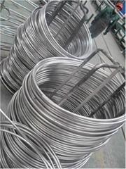 Coil stainless steel pipe / Bobina de tubos de acero inoxidable