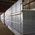 Steel structure for bridge