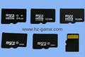 TF MICRO SD/SD内存卡MS/HX/M2/MMC/CF内存卡 10