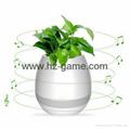 New Bluetooth speakersLED Night Light Music Flowerpot Touch Plant Piano 5