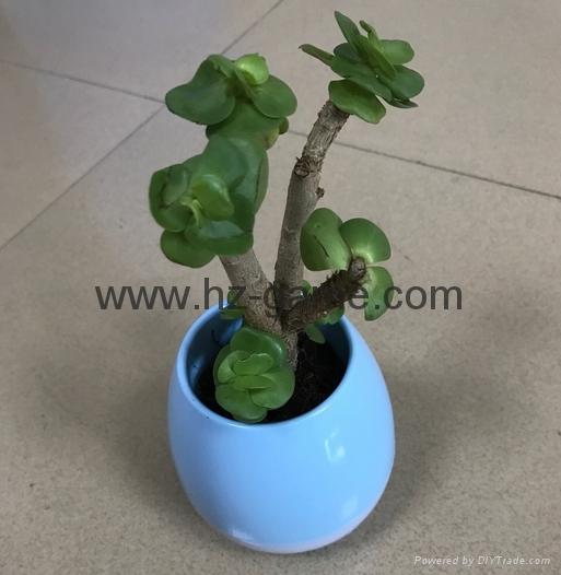 New Bluetooth speakersLED Night Light Music Flowerpot Touch Plant Piano 19