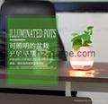 新品藍牙音箱智能音樂花盆感應創意禮品室內綠色盆栽工廠直銷 13