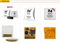 Factory 2018 R4i dual-core R4I3D burning green card, R4iGOLD, R4ISDHC