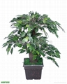 人造植物 1