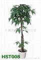 仿真植物 3