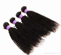 Brazilian Virgin Hair  KINKY CURL hair