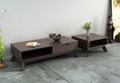 2PCS Wooden Espresso Cube Trunk Storage Coffee Table