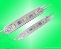 LED Modules light