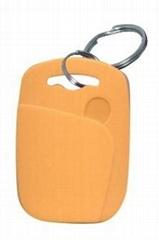 RFID tag keyfob (LF,HF,UHF)