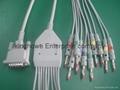 席勒一體十二導心電圖機導聯