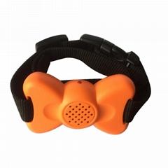 宠物智能止吠器声音震动可调大小训狗器