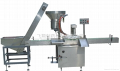 Wide mouth bottle capping machine YZG