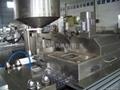 AL-Plastic Blister Packing Machine DPP-250DI 2