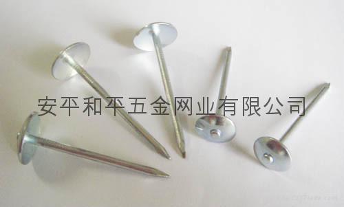 Umbrella roofing nails 1