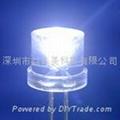 5MM超高亮平头白光LED 1