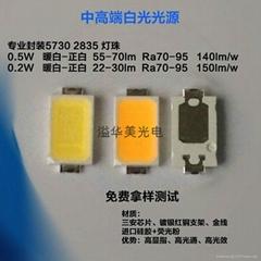 0.5W白色LED