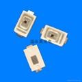 0.5W白色LED 5
