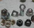 Steel Nuts, Stainless Steel Nuts, Brass Nuts, Titanium Nuts etc 2