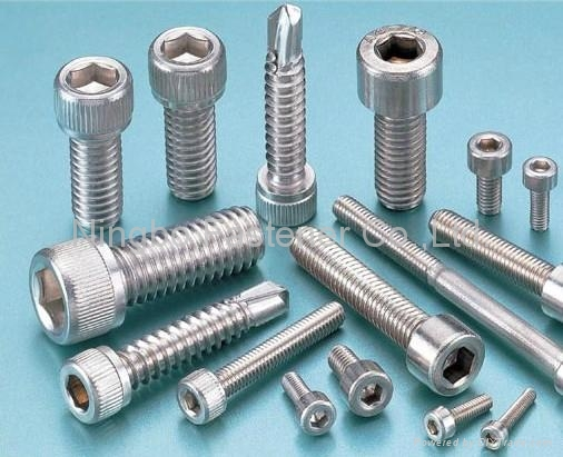 Stainless Steel Fasteners (Bolts/nuts/washers/screws/anchors/pins/rivets/studs) 2