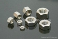 Stainless steel hex nuts ( ISO, DIN,