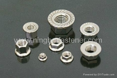 Stainless steel flange nuts ( ISO, DIN, ANSI, BS, AS, UNI, JIS etc)
