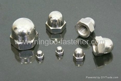 Stainless steel dome cap nuts