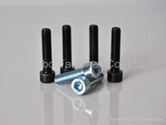 Hex Socket Cap Screws