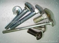Carriage Bolts, Guardrail Bolts, Railway Fasteners( ANSI, DIN, AS, BS, Specail )