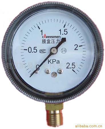 膜盒壓力表 1