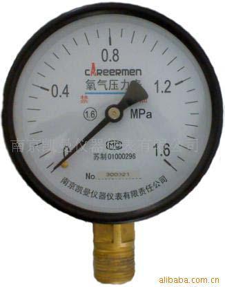 氨用壓力表 1