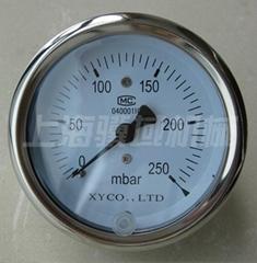 Pressuer gauge