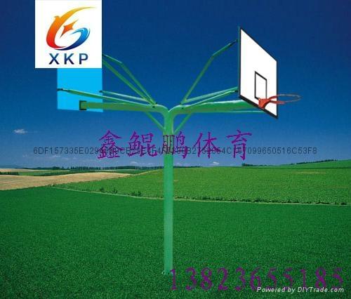 深圳篮球架(厂价直销) 2