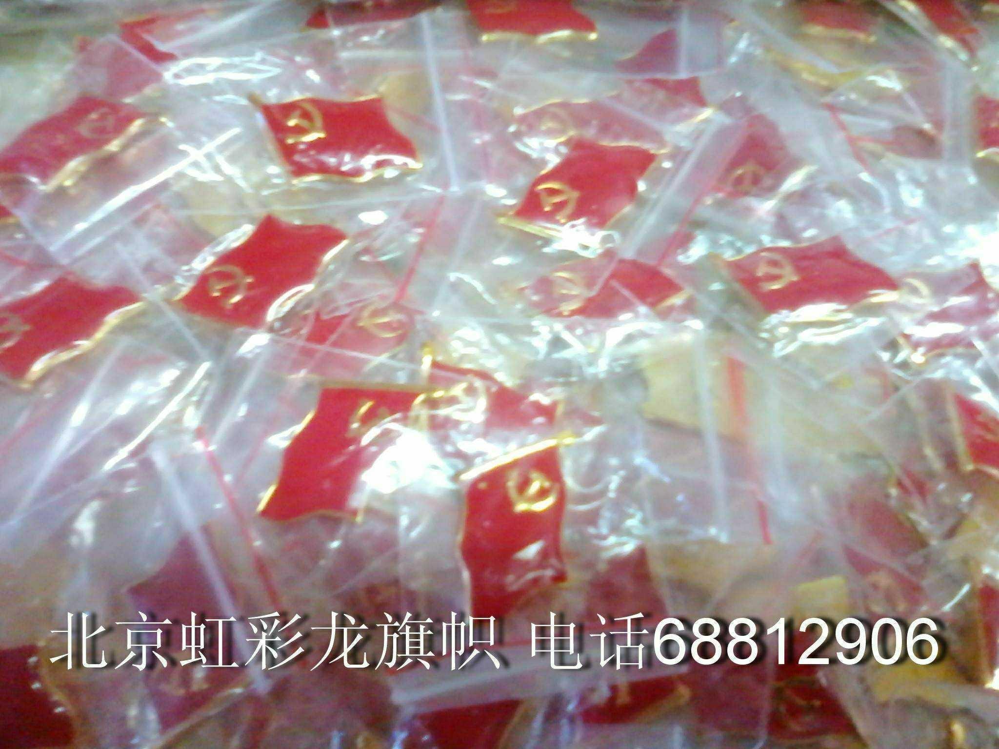 会场会议党徽徽章 7