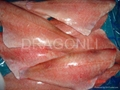 Atlantic Redfish fillet
