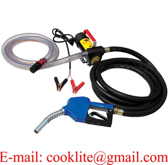 12V 24V 45L/Min Electric Diesel Oil And Fuel Transfer Extractor Pump Kit with Nozzle & Hose