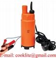 Pompa per olio diesel acqua gasolio transfer pompa sommersa auto caravan 12V/24V
