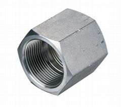 英制锥螺纹液压接头内螺纹管接头中国浙江生产商