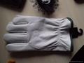 cow grain leather driver glove 2