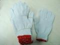 white cotton glove knited glove seamless glove 3