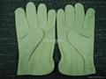 cow grain leather driver glove 5